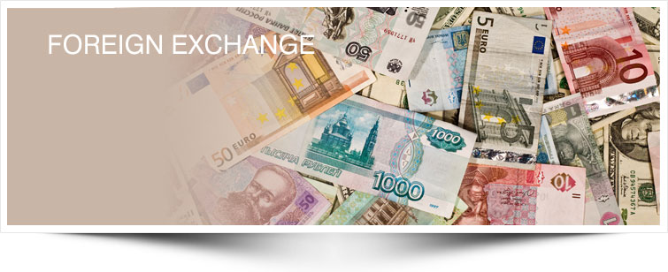 How Does Foreign Exchange Trading Work?